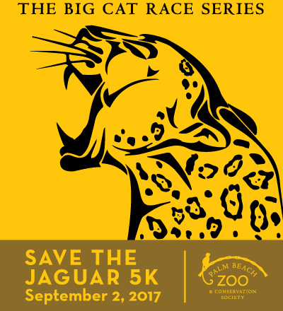 SaveJaguar 2017